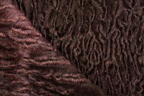 Афганский каракуль (астраган)