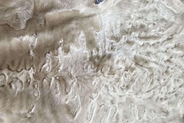 Южноафриканский каракуль – свакара