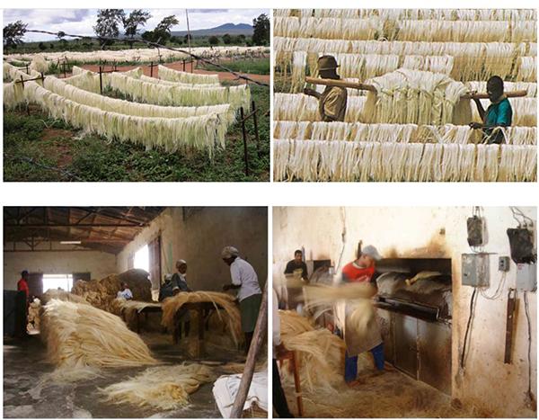 Изготовление сизаля