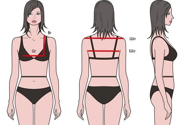 Мерка ширина спины